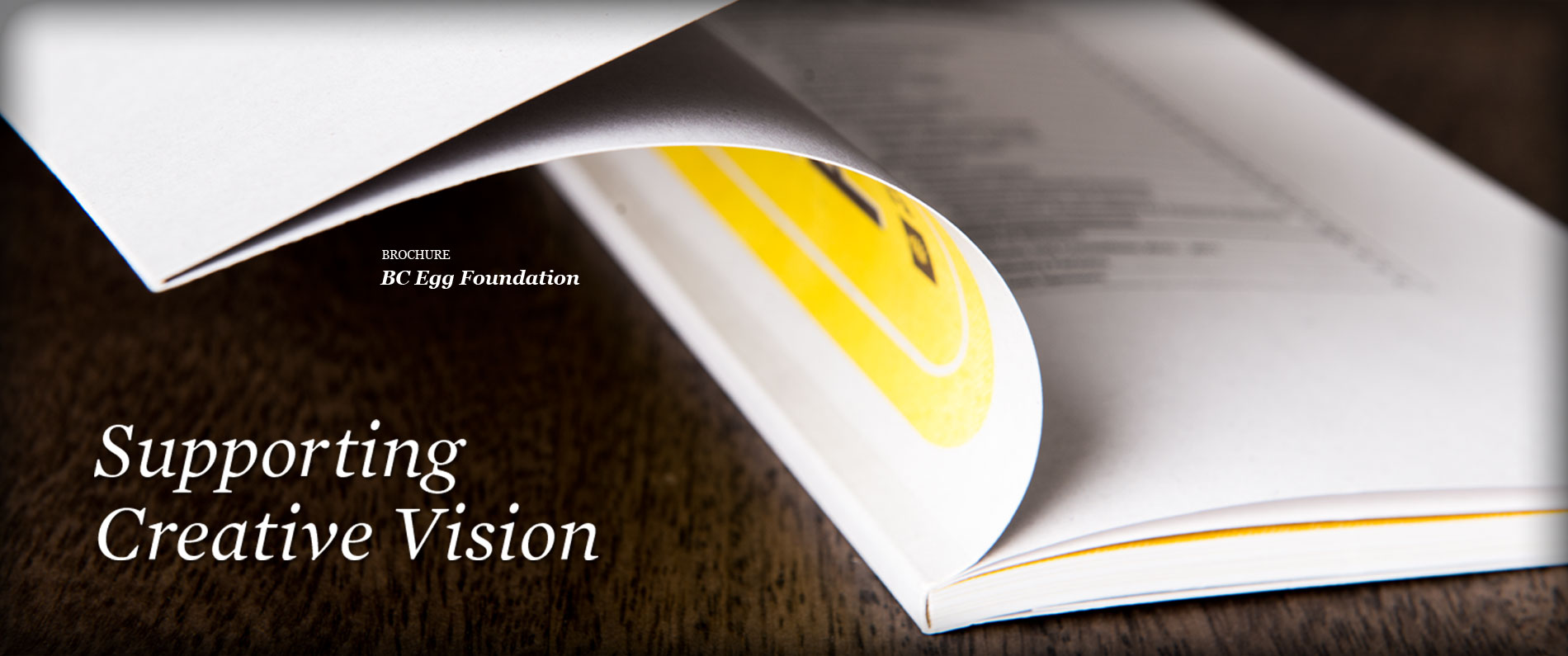 Printed BC Egg Foundation brochure